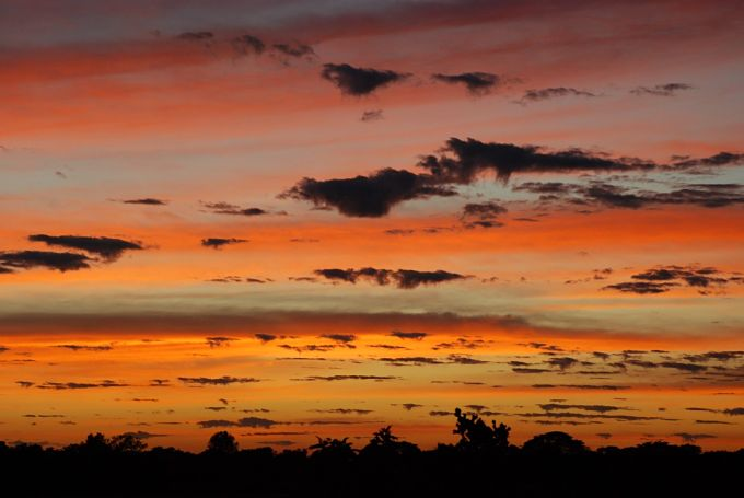 Sunrise on the Pantanal